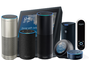 Echo Devices - all shapes and sizes!